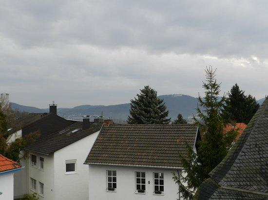Hotel-Restaurant Sebastianushof: Вид из окна