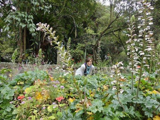 Casa Museo Quinta de Bolivar : gardens at La Quinta