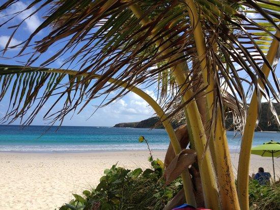 Casita Tropical: Flamenco Beach