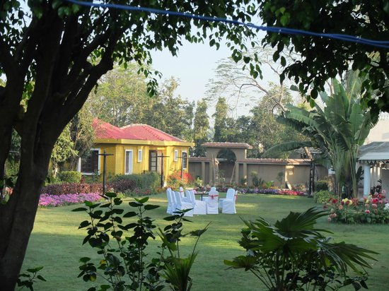 Camellia Hotel & Resort : 庭園