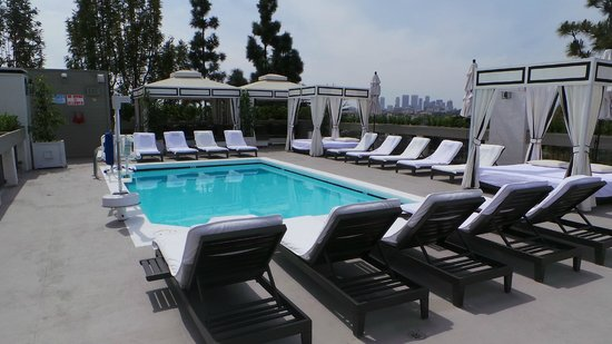 Chamberlain West Hollywood: Roof top pool