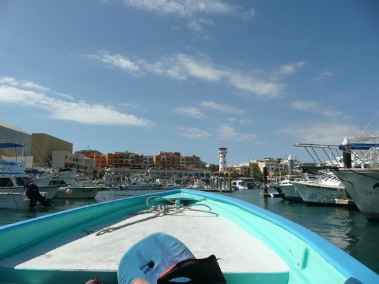 Tesoro Los Cabos: view of resort coming back by water taxi