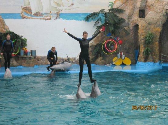 Odessa, Oekraïne: дельфины и люди
