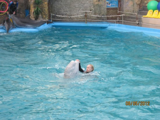 Odessa Delphinarium Nemo: дельфины и люди