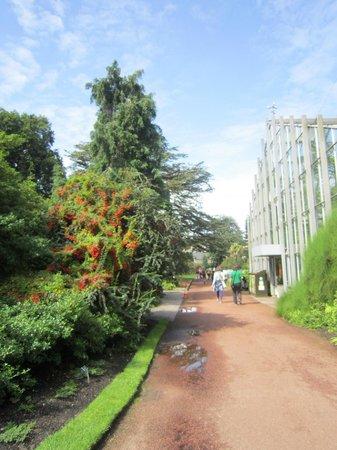 Holiday Inn Express - Edinburgh City Centre: Ботанический сад