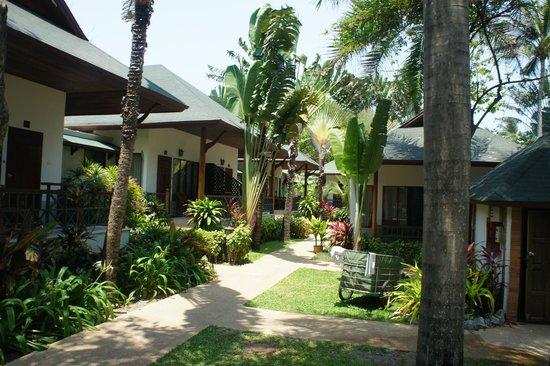 Banana Fan Sea Resort: Hotellet