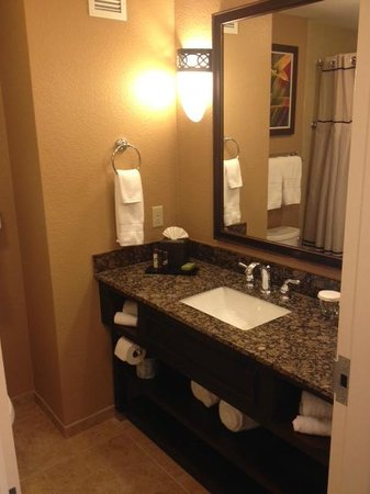Embassy Suites by Hilton Orlando Lake Buena Vista South: Small, weak water pressure, but more than acceptable