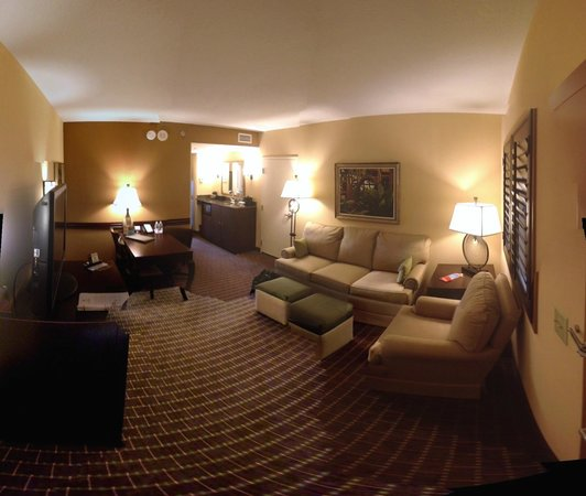 Embassy Suites by Hilton Orlando Lake Buena Vista South: Living room, tad dark, but plenty of lighting
