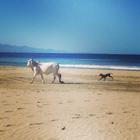 La Veranera - Playa El Coco: just a fairytale unfolding on the beach