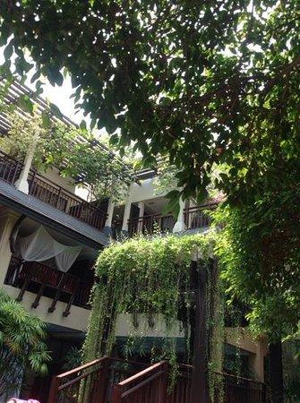 Burasari Resort: from the sun decks around the pool
