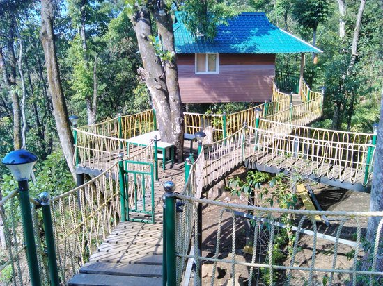 Kaivalyam Retreat : tree house