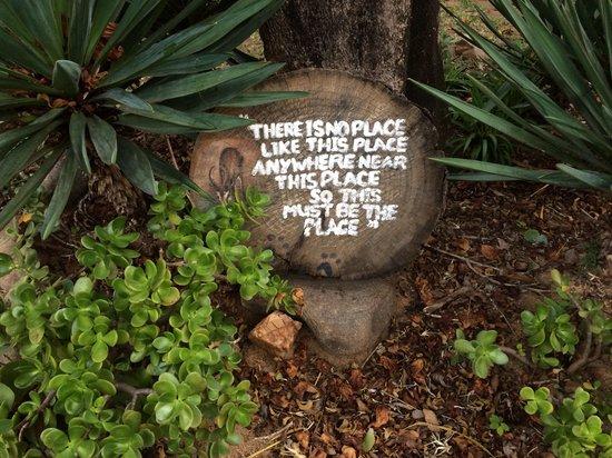Marc's Treehouse Lodge: Nice