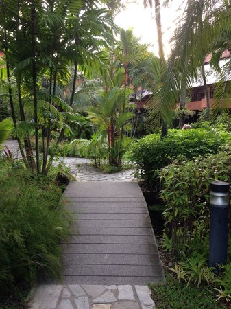 Patong Merlin Hotel : Lovely gardens throughout the grounds