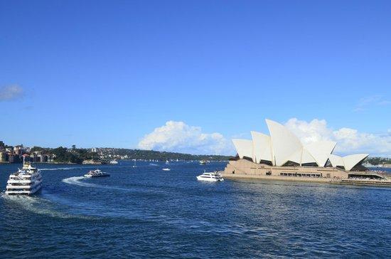 I'm Free Walking Tours: Opera House