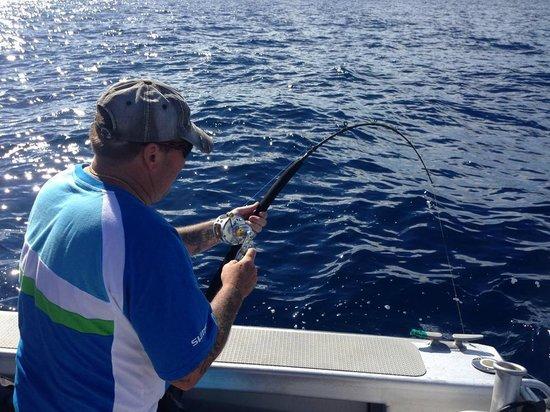 Waihau Bay Lodge: action kingfish