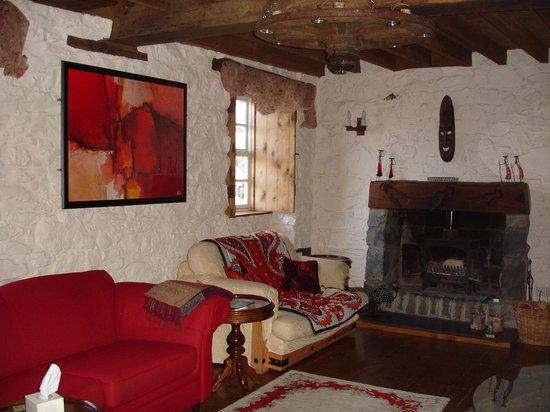 Pentre Felin Bed & Breakfast: Cosy sitting room
