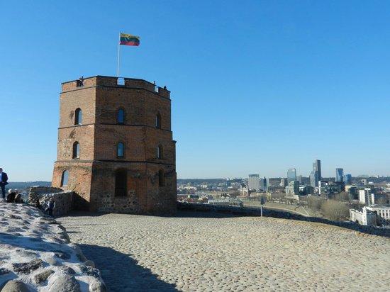 Gediminas Tower : Башня