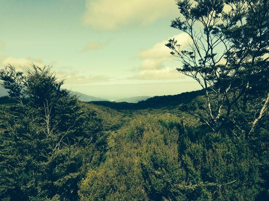 Heaphy Track: Morning of day 4 and our destination in sight!