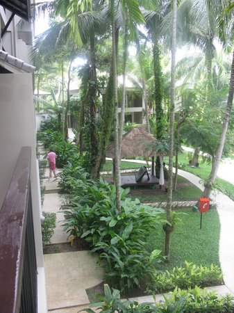 Novotel Phuket Surin Beach Resort. : садик из окна