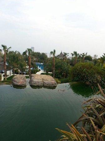 Asia Gardens Hotel & Thai Spa, a Royal Hideaway Hotel : Vistas del jardín
