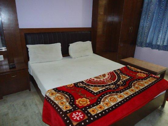 Hotel Sahara International Deluxe: Deluxe Room