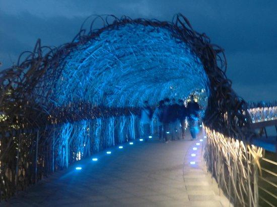 Taitung Seashore Park: 國際地標