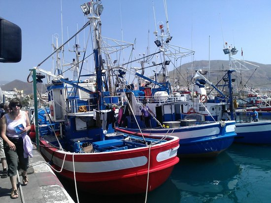 Hotel H10 Big Sur Boutique Hotel: порт, откуда ходят паромы и где можно купить живую рыбку