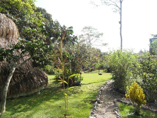Finca Ecologica El Maco: garden