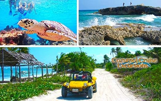 Private Cozumel Dune Buggy Tour In Cozumel Mexico By