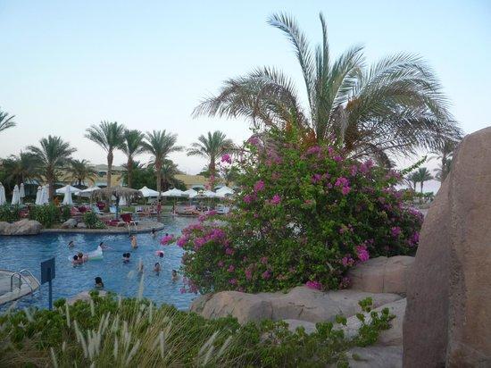 The Bay View Resort Taba Heights : piscine