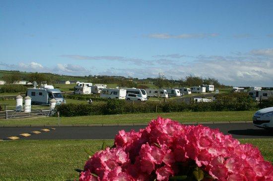 Ballyness Caravan Park: Touring areas at Ballyness