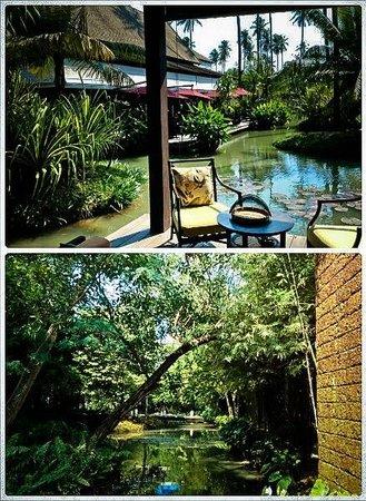 Anantara Mai Khao Phuket Villas: greenery in the hotel