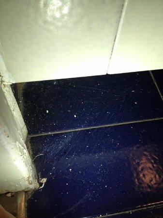Apartamentos Eurobuilding 2: Spider web at the Bathroom door