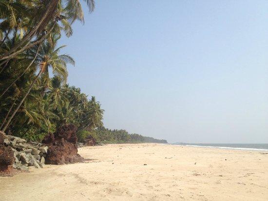 KK Heritage Homestay: Kizhunna beach