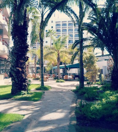 Hotel Escorial & Spa : Path to the pool through gardens