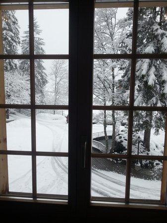 Waldhotel Doldenhorn: Ausblick