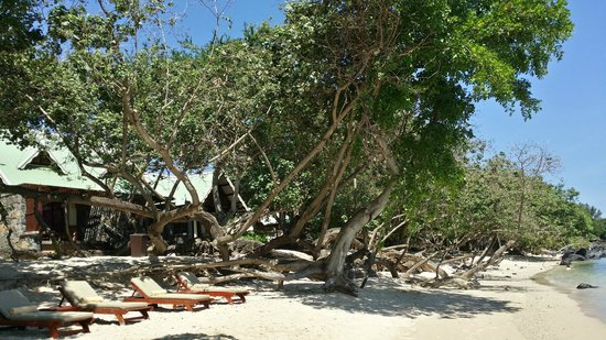 Club Med La Plantation d'Albion : Spiagge riservate
