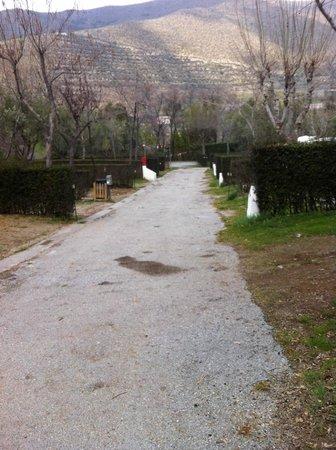 Camping Las Lomas: Calle parcelas