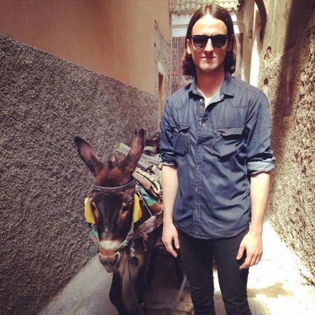 Riad Tizwa: Donkey outside the Riad door