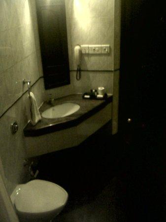 Harbour View Residency: Toilet