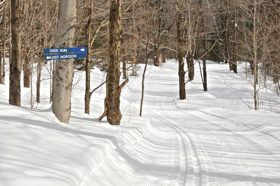 The Mountain Top Inn & Resort : Intimate ski trails that are goomed to perfection.