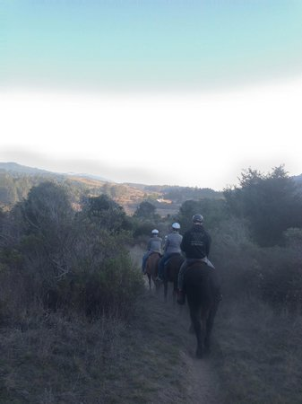 Five Brooks Stables : on the trail