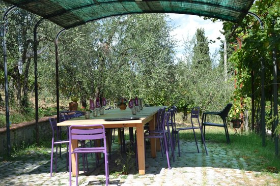 Montefioralle Winery: Place for the tasting