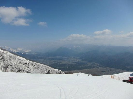 Hakuba 47 Winter Sports Park : トップからのコース