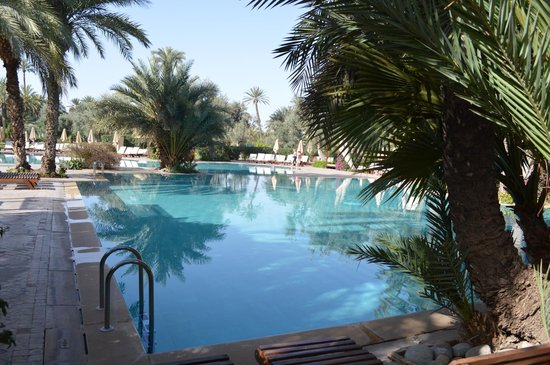 Club Med Marrakech La Palmeraie: piscine