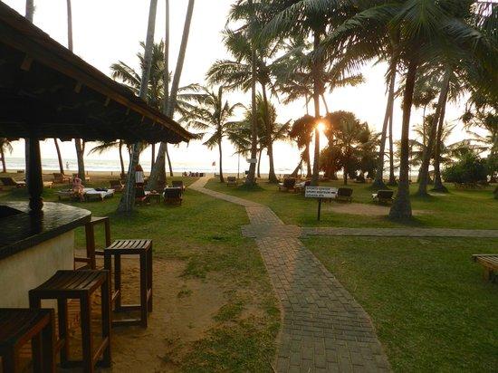 Hotel Mermaid & Club: Beach bar.... beautiful tropic atmosphere ...
