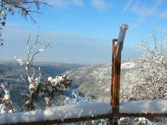 Les Hauts d'Albas: Vue depuis la terrasse d'une yourte