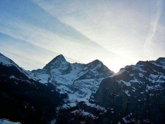 Eiger Guesthouse: Blick auf Jungfrau