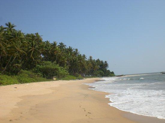Chera Rock Beach House : Beach