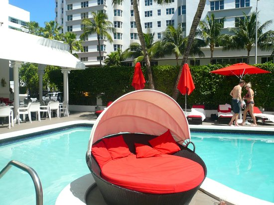 Piscina Picture Of Red South Beach Hotel Miami Tripadvisor